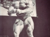 arnold-schwarzenegger-most-muscular