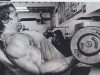 arnold-sitting-dumbbell-curls