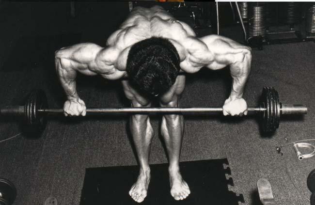 winnie d steroid