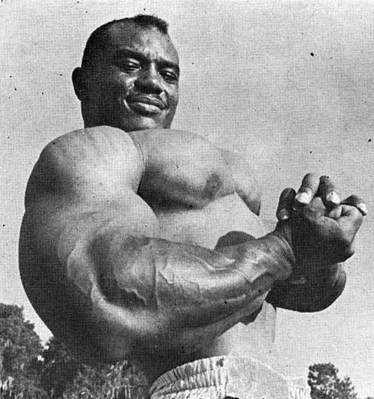 sergio-oliva-muscles8