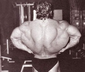 Muscle Building Blog » Blog Archive Back training in 30 ...