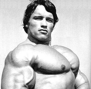 arnold chest 300x294 Arnold Schwarzenegger, biography, pictures and videos.