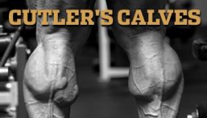 Cutler's Calves